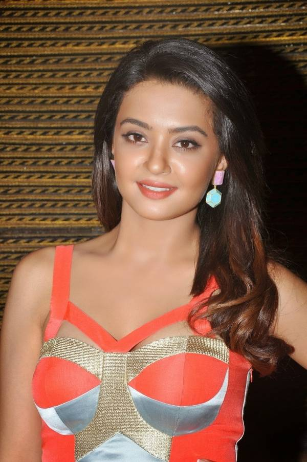 Surveen-Chawla-Age-Weight-Height-Wiki-images Scorching Surveen Chawla 11+ Unseen Bikini {Photograph} Swimsuit Footage Age Ft Wiki